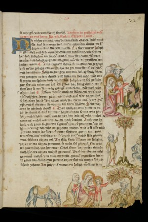 e-codices_sbs-0008_020r_large